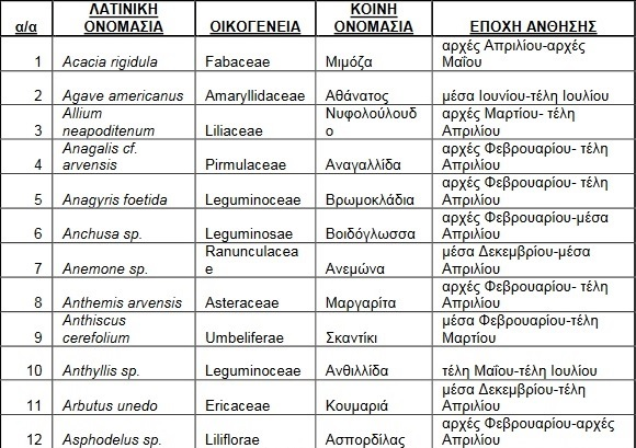 melissokomika-fyta-rodos1