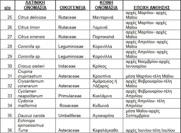 melissokomika-fyta-rodos3