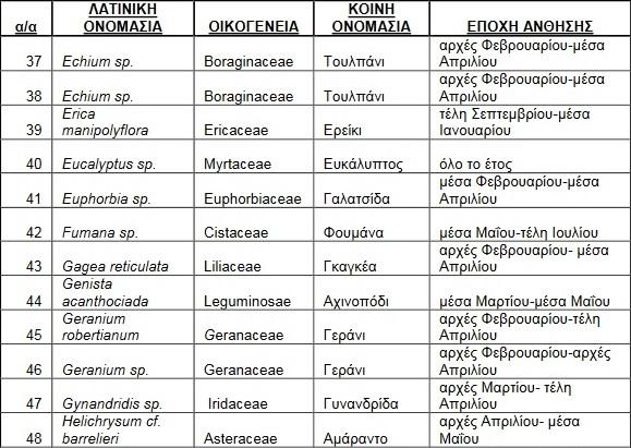 melissokomika-fyta-rodos4